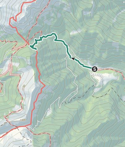 Map / Great War: from Malga Grassi to Rifugio Pernici