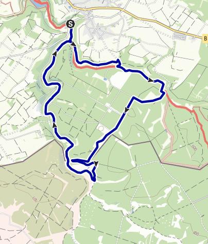 Karte / Fuhrtsbach- und Perlenbachtal: Narzissenblüte rund um die Bielei