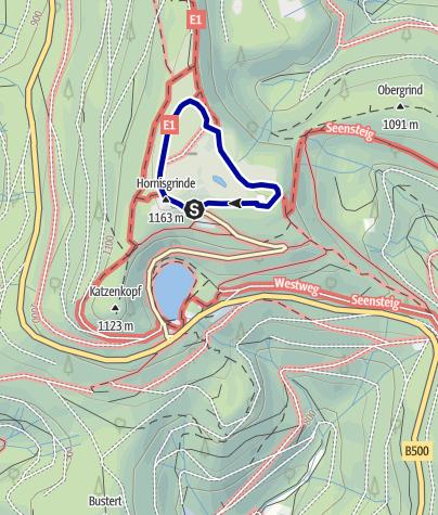 Karte / Barrierefreie NaTour auf der Hornisgrinde im Nordschwarzwald