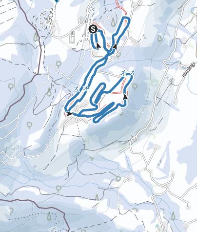 Karte / Scheidegg R37 Oberstein-Loipe