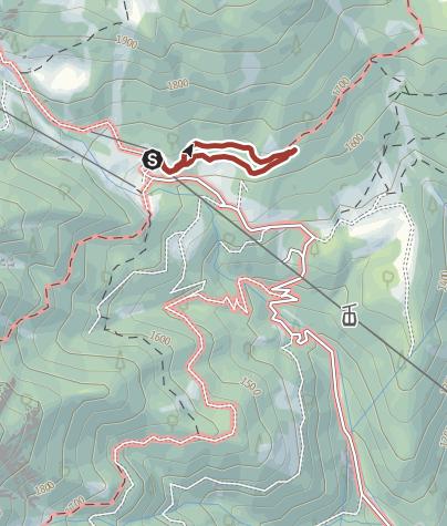 Cartina / La foresta dei draghi