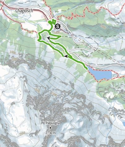 Karte / Bergwald-Wundertüte, Preda