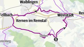 """Karte / Radtour """"Wein- und Kelterroute"""""""