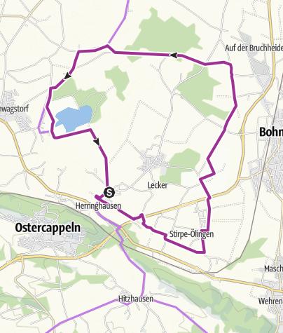 Karte / BO 3 Rund um Herringhausen-Stirpe-Oelingen