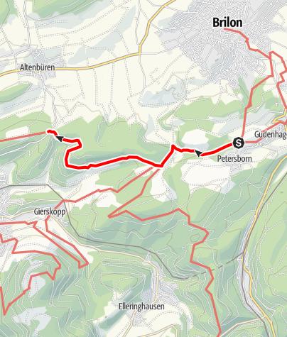 Karte / Waldrouten-Etappe Petersborn - Langer Berg Olsberg