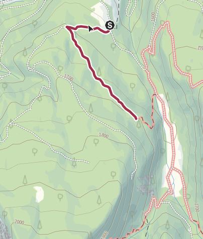 "Map / Walk in the ""Bosco che Suona"" (The sounding forest)"