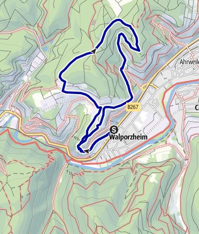 Karte / Traubenpfad 1