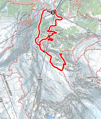 Carte / Le glacier du Gorner au fil du temps (Nr. 17b)