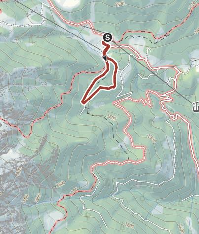 Cartina / Il Pastore Distratto