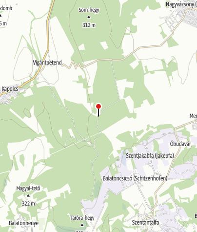 Térkép / Csicsói erdészház (OKTPH_34)