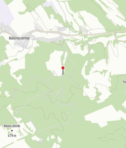Térkép / Kisgyón (OKTPH_47_1)