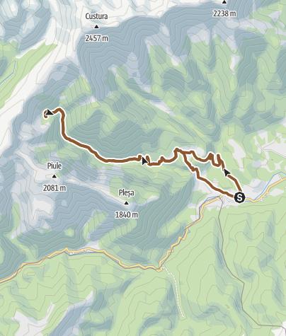 Hartă / Câmpu lui Neag - Cabana Buta - Cheile Buții - Câmpu lui Neag
