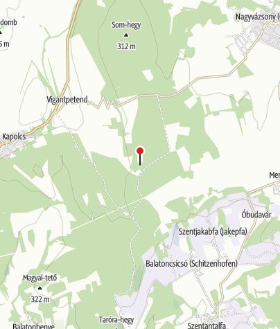 Map / Kerékpár Pont (Balatoncsicsói erdészház)