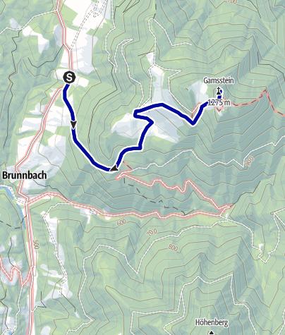 Karte / Gamsstein ab Gschwendtalm (Brunnbach, Reichraming)