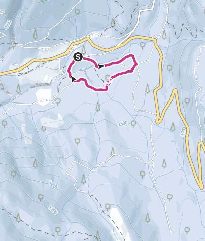 Cartina / Paneveggio - sentiero Marciò