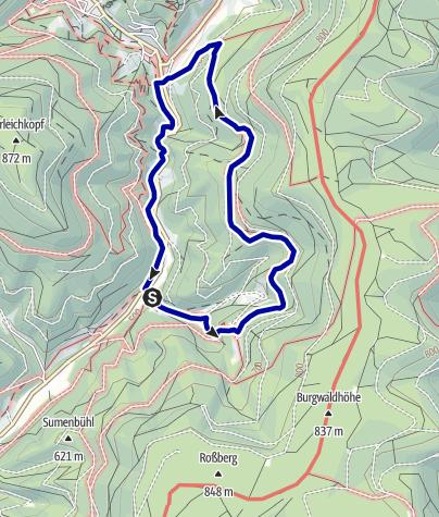 Karte / Bad Rippoldsau/Schapbach - Zu Burgbachwasserfall und Burgbachfelsen