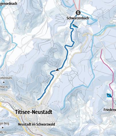 Karte / Reichenbach Spur