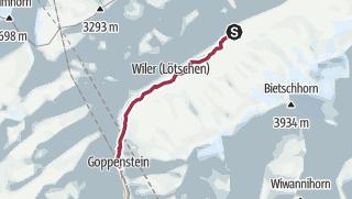 Map / Cultural Trail