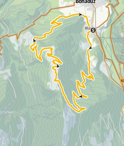 Karte / 262 Rhäzünser Alp Sura