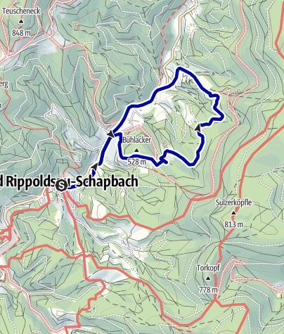 Karte / Bad Rippoldsau/Schapbach - Zum Wolf- und Bärenpark über die Höll