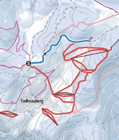 Karte / Todtnauberg Stübenbachloipe