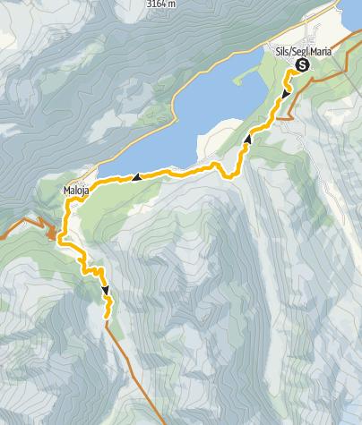 Map / Sils - Maloja - Lägh da Cavloc - Sils