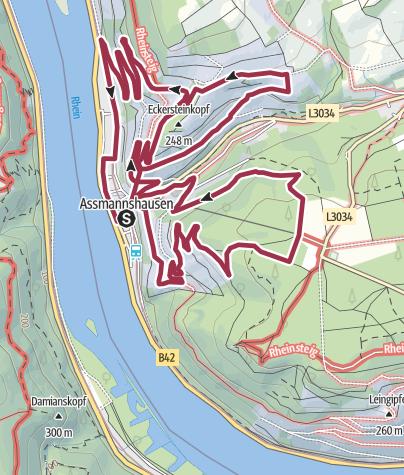 Karte / Rotweinweg Assmannshausen