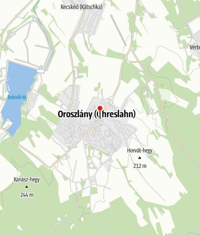Map / OTP Bank ATM (Oroszlány, Rákóczi utcai fiók)