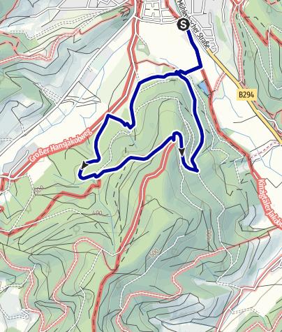 Map / Wald- und Erlebnispfad Bächlewald
