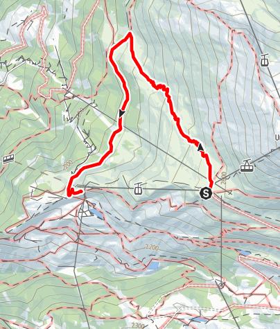 Map / Flower Trail