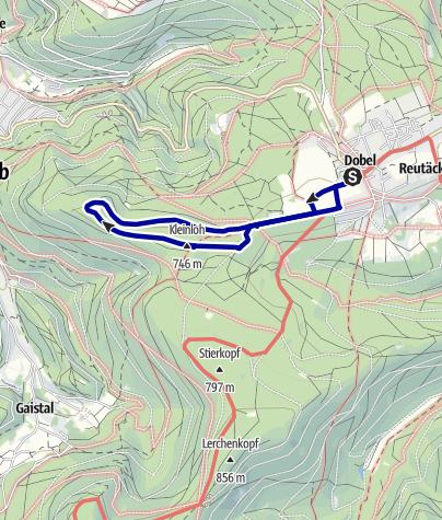Karte / Rund um den Maienbergkopf
