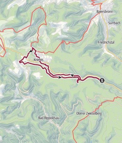 Karte / Wanderung 4 ab Campingplatz Langenwald (blau)